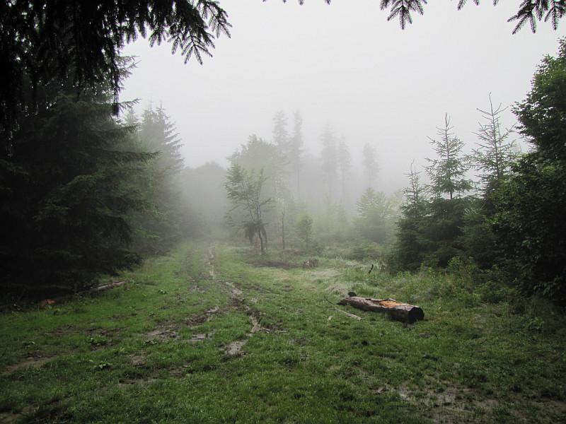 Dalsza droga od przełęczy pod Hričovcom.
