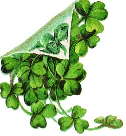HAPPY SHAMROCK DAY