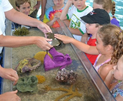Touch tank at Port Canaveral Kid's Free Fishing Clinic
