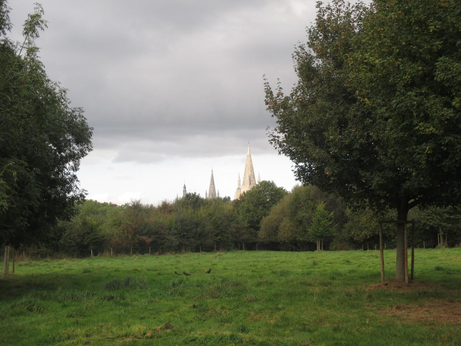 de torens van Ieper