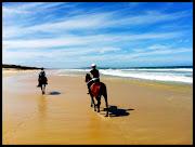 A Girl, A Beach & A HorseEQUATHON Noosa