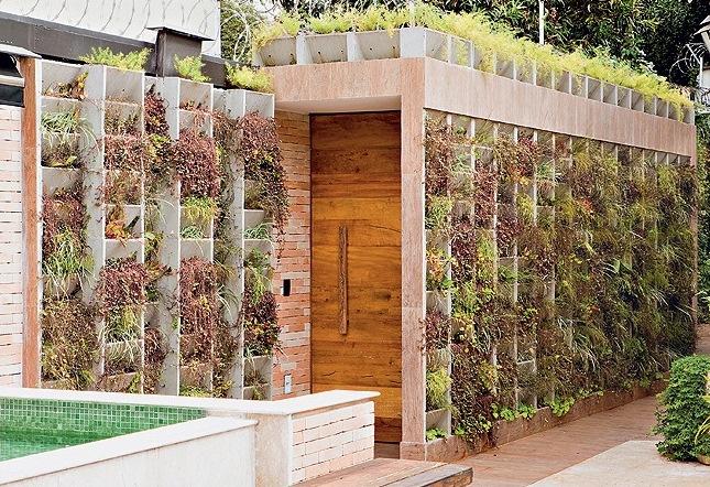 jardim vertical em muro:Muro com nichos de concreto, são preenchidos com a planta ripsális e