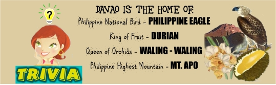 Araw, ng, Dabaw, Blog, Competition, Contest, Promos, Winnings, Davao, Life, is, here, Tourism, City, king, durian, queen, flower, waling waling, mount, apo, eagle, national, bird