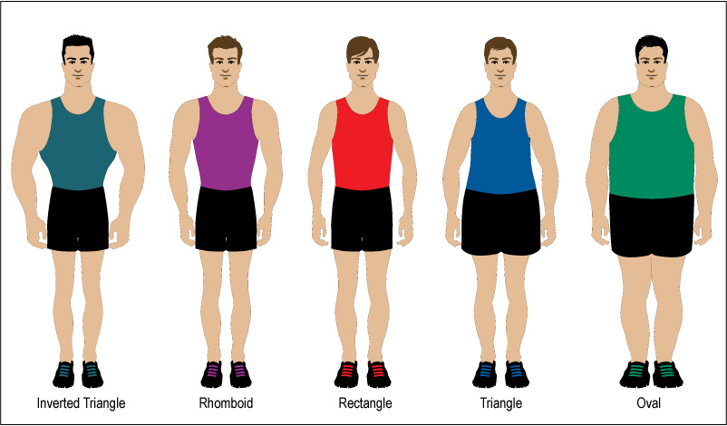 Types of body shapes male