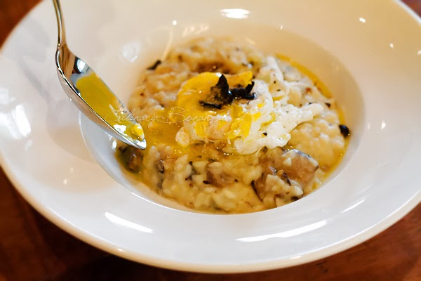 Wild mushroom risotto with black truffle and soft poached egg