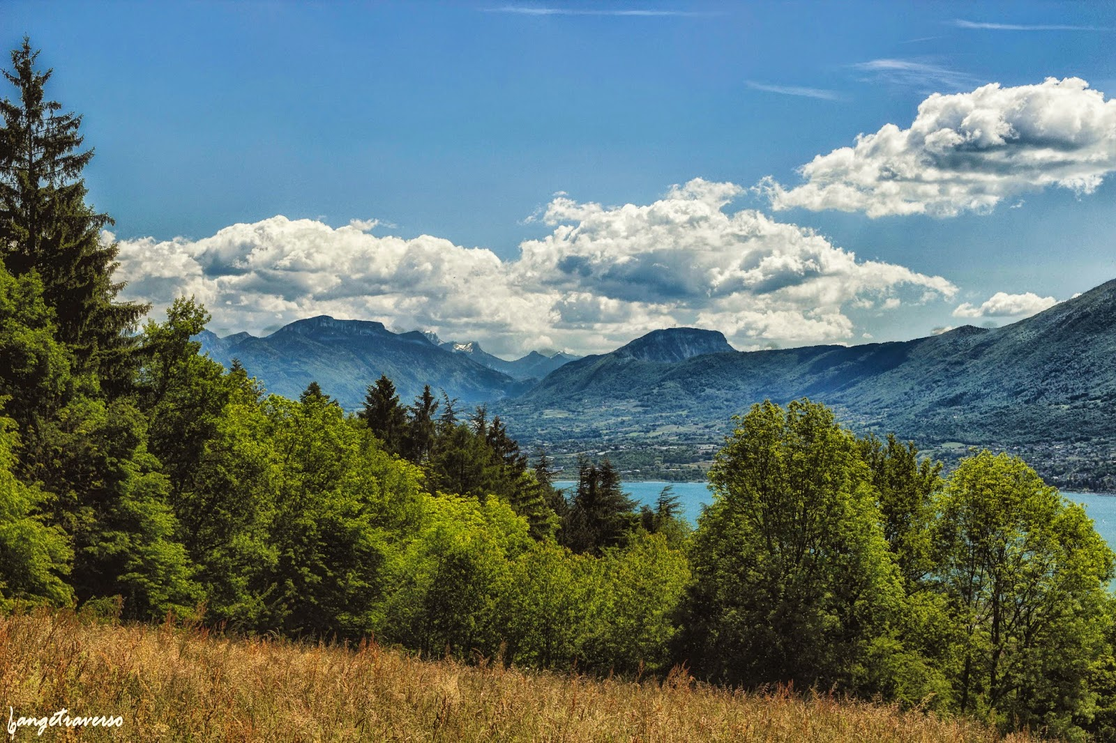 Foret du Corsuet, Savoie