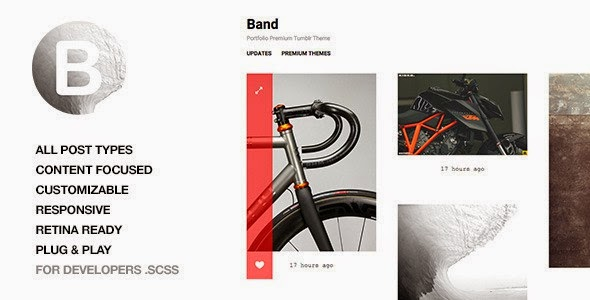 Best Responsive Premium Tumblr Theme 2015