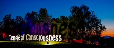 burning man, festival, desert, celebration, consciousness