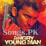 Angry Young Man Returns (2014)