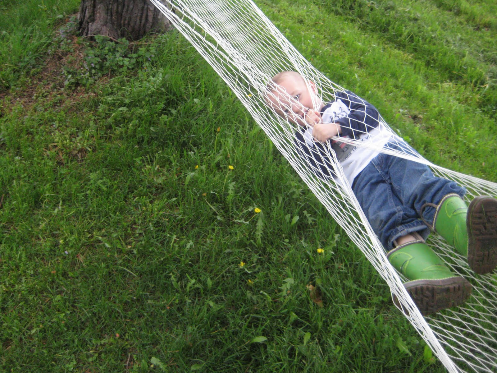 Medium image of this is a hammock and i flipped out of it  it was very fun though and my mom said woo boy  she won u0027t go in there
