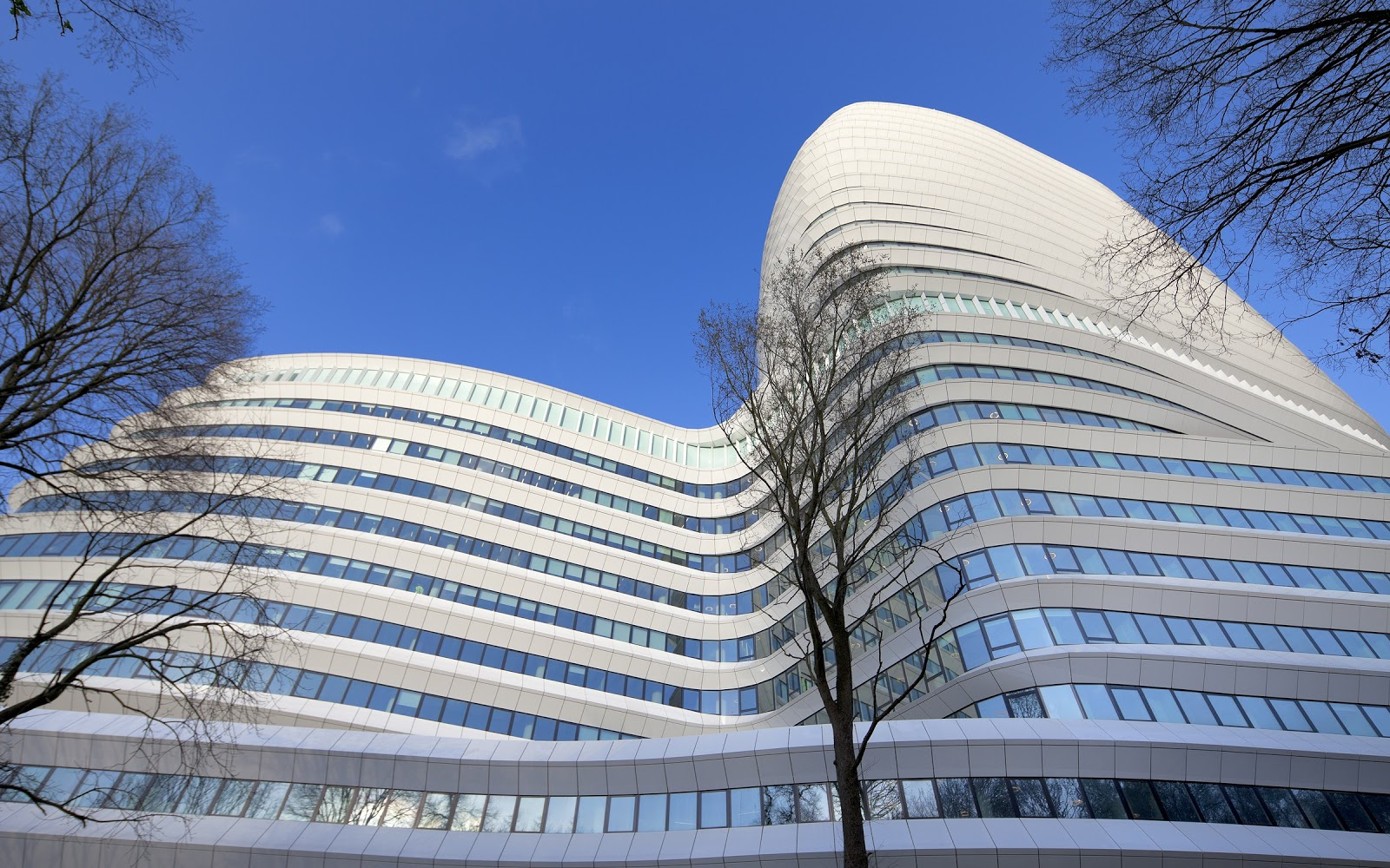 Picture of an Office Building