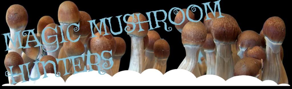 Magic Mushroom Hunters