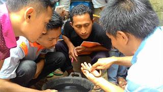 Budidaya Belut Lampung