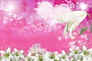 Marcos gratis para fotos wallpaper floral rosa y scrap for Para decorar fotos gratis