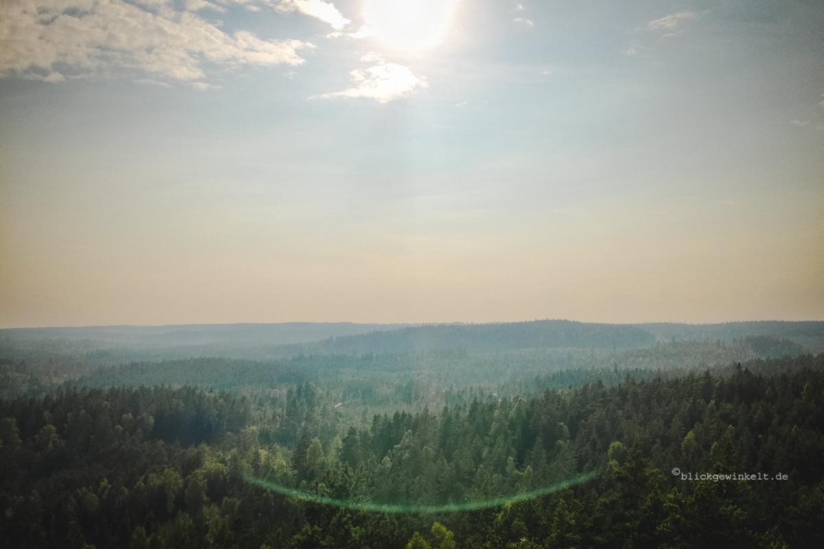 Wälder in Smaland, Schweden