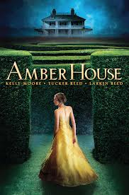 image: AMBER HOUSE- mystery book review