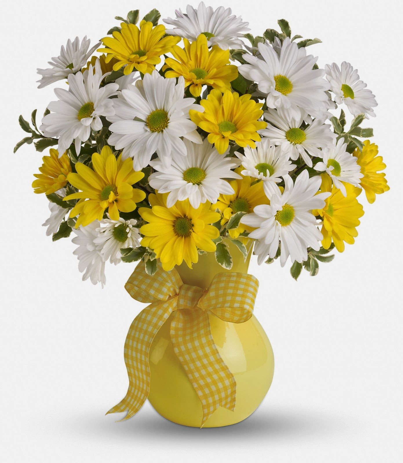 Bloomex Order Flowers Quickly and Securely for Canada Delivery Order fro