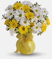 bloomex-yellow-white-daisy
