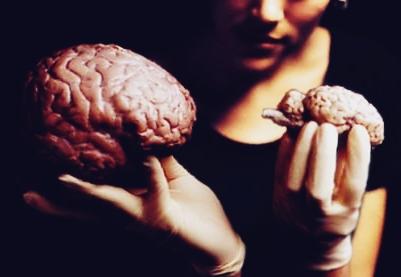 menjaga dan merawat otak agar selalu sehat