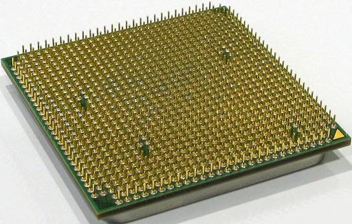 Maksud Perbedaan Processor Box dan Tray