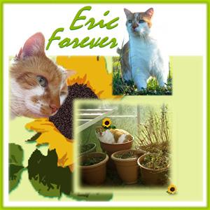 Eric Forever