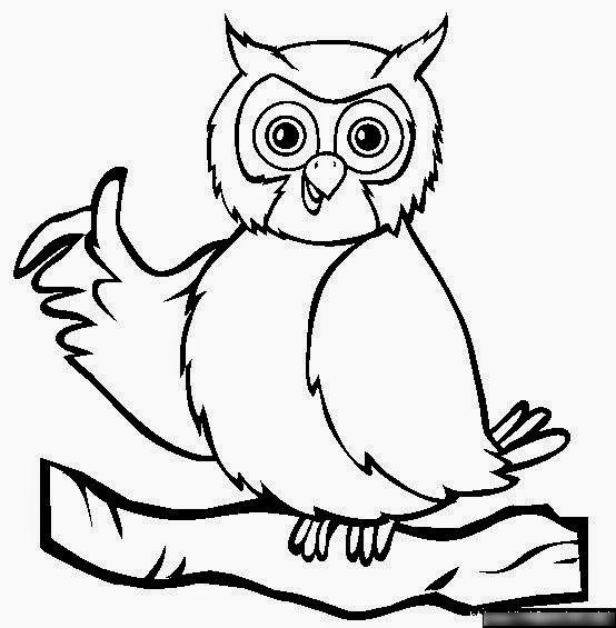 Раскраска сова онлайн