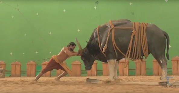 The Bahubali makers have released a behind-the-scene video of visual effects that went into the shooting of the famous bull fight scene in the movie.  To develop the scene, the filmmakers used the lived-through animation technique, which was made popular by James Cameron movie Avatar.
