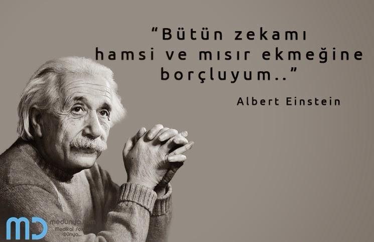 Albert Einstein: Bütün Zekamı Hamsi ve Mısır Ekmeğine Borçluyum