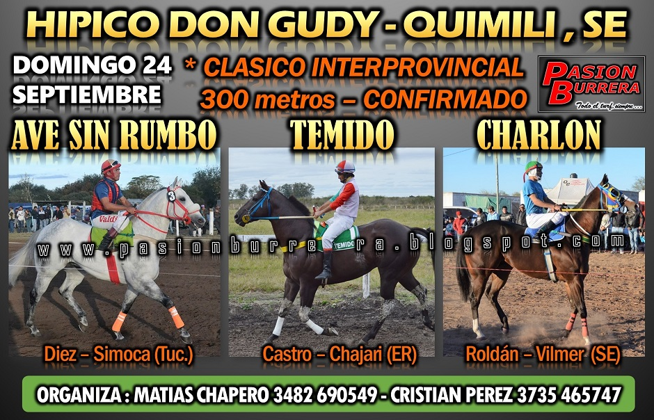 QUIMILI 24 - 300 INTERPROVINCIAL