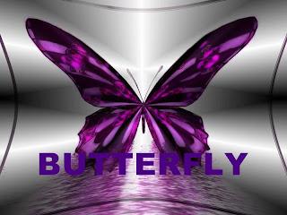 Butterfly bisuteria heca a mano y Complementos