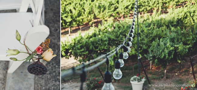 """Vineyard Wedding Photography 