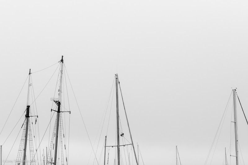 Portland, Maine ship masts black and white photo by Corey Templeton
