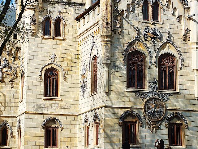 detaliu palat miclauseni aprilie 2013