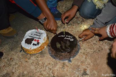 New year celebration 2015, cake cutting