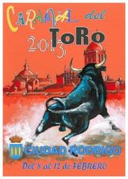 carnaval del toro 2013