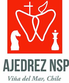 TALLER DE AJEDREZ NSP