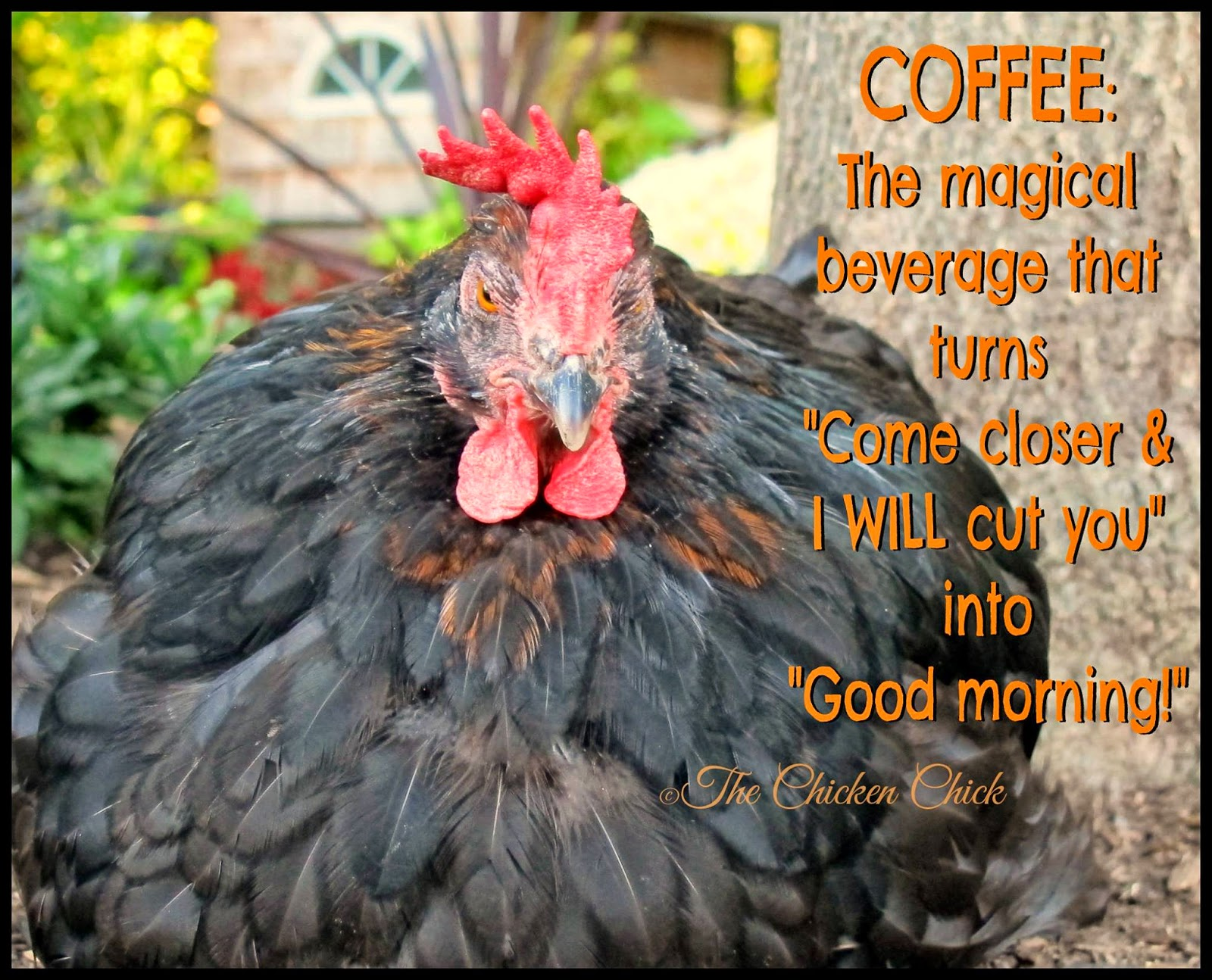 "Coffee: the magical beverage that turns ""Come closer & I WILL cut you"" into ""Good morning!"""