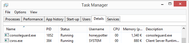 consoleguard.exe in the Windows Task Manager