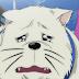 Hajime No Ippo New Challenger Episode 13 Subtitle Indonesia