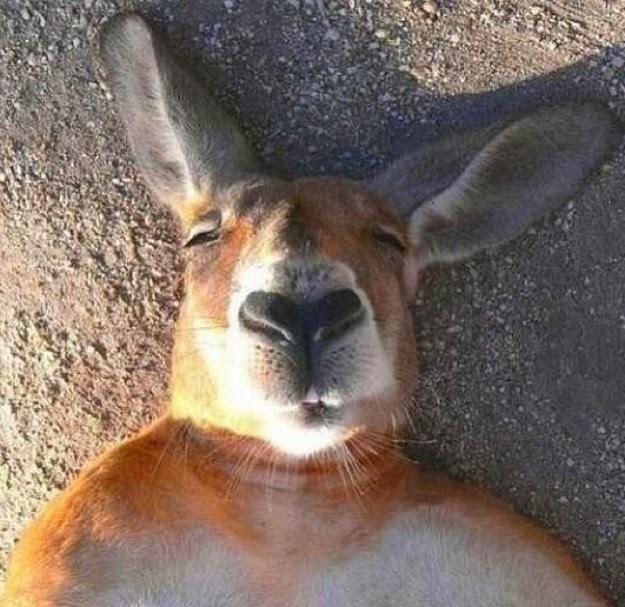 embarrassing-selfies-2