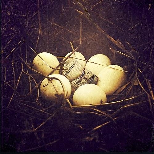 03-Surreal-Photo-Manipulation-Sarolta-Bán-www-designstack-co