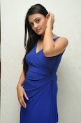 Nikitha Narayan glam pics in blue-thumbnail-13