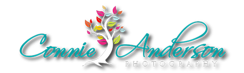 Connie Anderson Photography