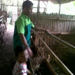 Kunjungan ke Peternakan Kambing  tgl 5 April 2013