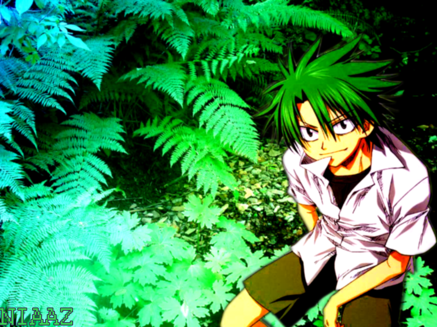 Kosuke Ueki (The Law of Ueki)