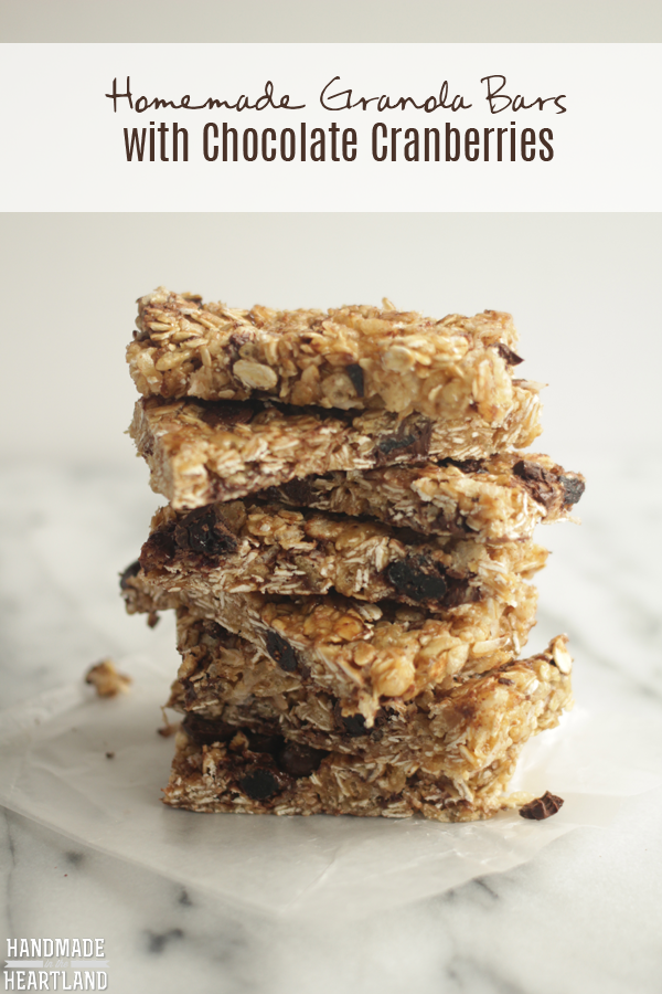Dark Chocolate Recipes: Homemade Granola Bars with Chocolate Cranberries #lovedovefruits #cbias #shop