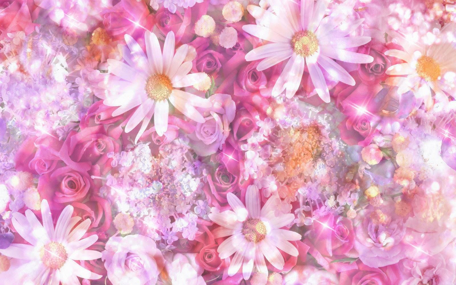 backgrounds spring wallpapers ~ top best hd wallpapers for desktop