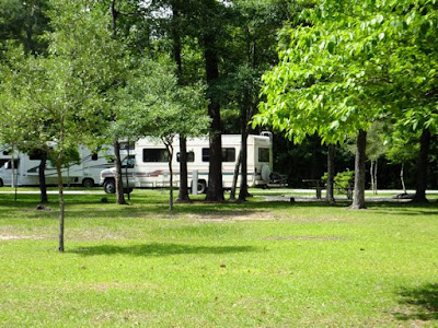 Cedar Point Campground in the Croatan Forrest in a motorhome RV in North Carolina
