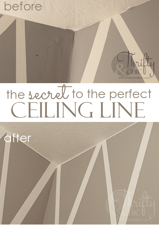 Thrifty and chic diy projects and home decor for Painting ceiling same as walls