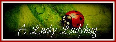 A Lucky Ladybug